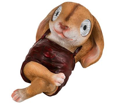 Dehner Solar-Kaninchen 'Jolie'