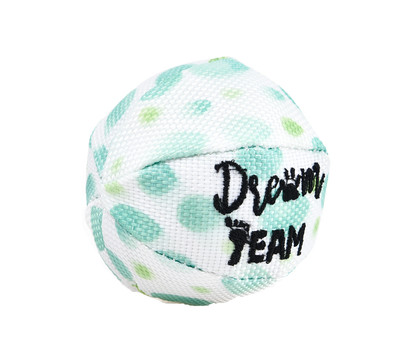 Dehner Wasserspielzeug Dream Team Ball