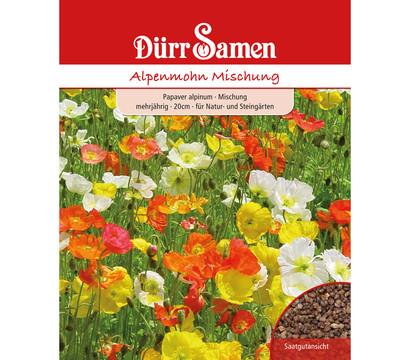 Dürr Saatgut Alpenmohn Mischung