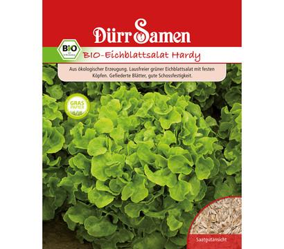 Dürr Samen Bio-Eichblattsalat Hardy 'Lactuca sativa'