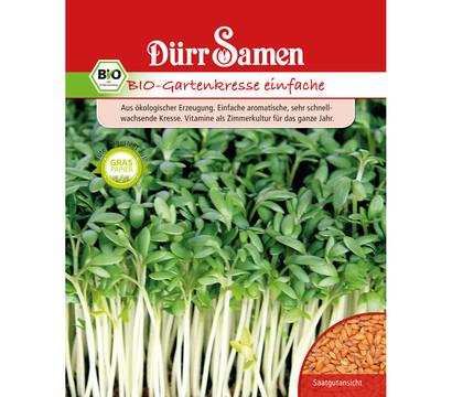 Dürr Samen Bio-Gartenkresse einfache 'Lepidium sativum'