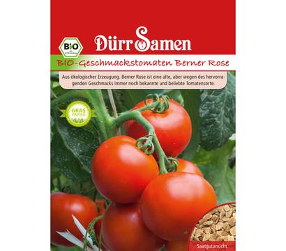 Dürr Samen Bio-Geschmackstomaten Berner Rose 'Solanum lycopersicum'