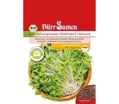 Dürr Samen Bio-Keimsprossen Blattsenf Green Mizuna