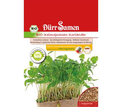 Dürr Samen Bio-Keimsprossen Koriander