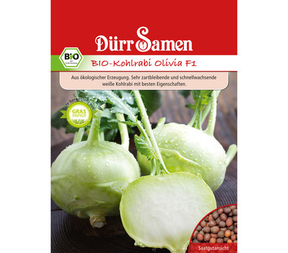 Dürr Samen Bio-Kohlrabi Olivia F1 'Brassica oleracea'