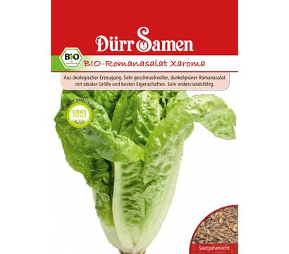 Dürr Samen Bio-Romanasalat Xaroma 'Lactuca sativa'