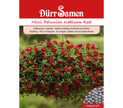 Dürr Samen Mini-Petunie 'Kabloom Red'