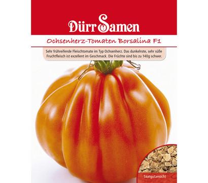 d rr samen ochsenherz tomaten 39 borsalina f1 39 dehner. Black Bedroom Furniture Sets. Home Design Ideas