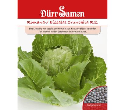 Dürr Samen Romana-/ Eissalat 'Crunchita RZ'