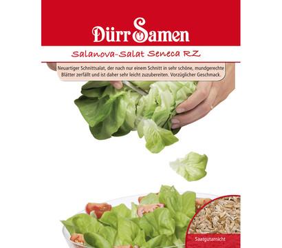 Dürr Samen Salanova-Salat 'Seneca RZ'