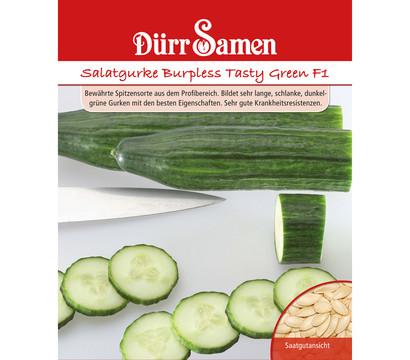 Dürr Samen Salatgurke 'Burpless Tasty Green F1'