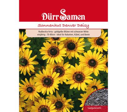 Dürr Samen Sonnenhut 'Denver Daisy'