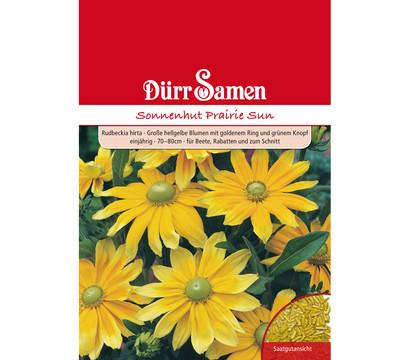 Dürr Samen Sonnenhut 'Prairie Sun'