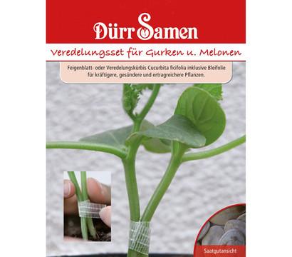 Dürr Samen Veredelungsset Gurken & Melonen