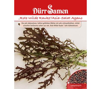 d rr samen rote rauke 39 asia salat agano 39 dehner garten center. Black Bedroom Furniture Sets. Home Design Ideas