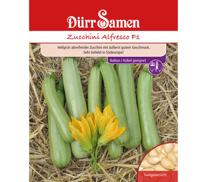 d rr samen zucchini 39 alfresco 39 dehner garten center. Black Bedroom Furniture Sets. Home Design Ideas