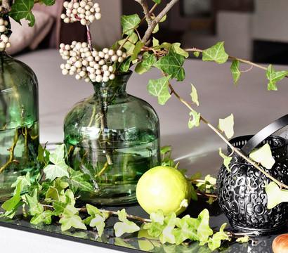 efeu gr nlaubig dehner garten center. Black Bedroom Furniture Sets. Home Design Ideas