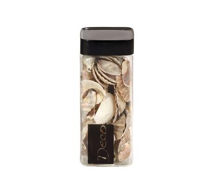 EuroSand Muscheln natur, 550 ml