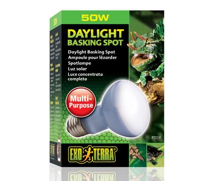 Exo Terra® Daylight Basking Spot
