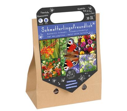 Florex Blumenzwiebel Mix 'Schmetterlingsfreundlich'