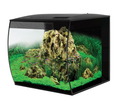 FLUVAL® Nano-Aquarium Set Flex