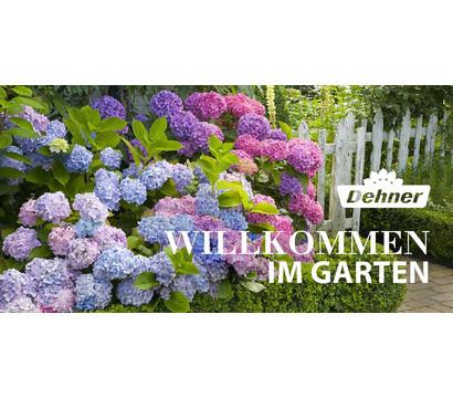 Gutschein - Willkommen im Garten