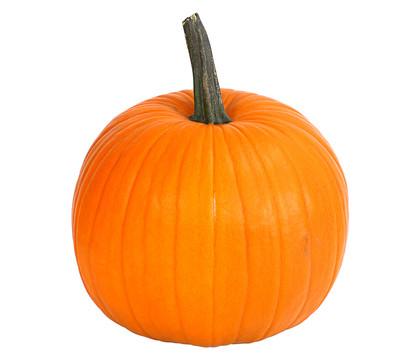 Halloween-Kürbis, groß
