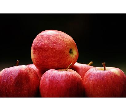 Herbstapfel 'Red Topaz'