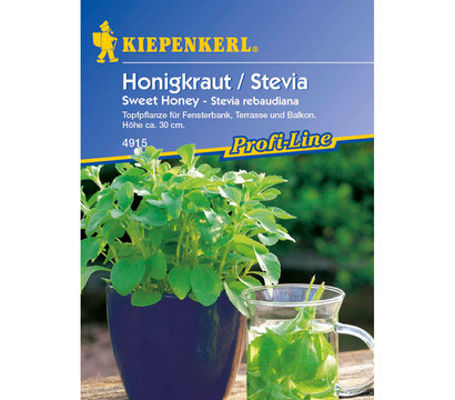 honigkraut stevia sweet honey saatgut von kiepenkerl. Black Bedroom Furniture Sets. Home Design Ideas