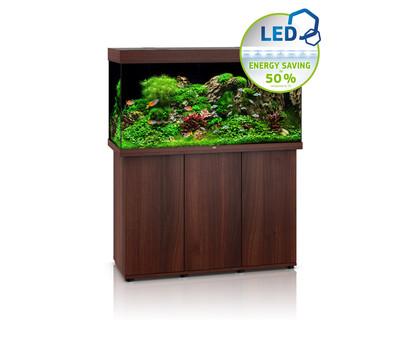 juwel aquarium kombination rio 350 led dehner garten center. Black Bedroom Furniture Sets. Home Design Ideas