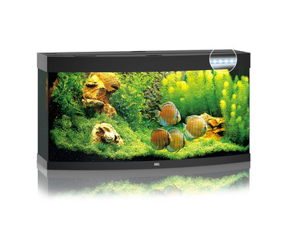 JUWEL® AQUARIUM Vision 260 LED