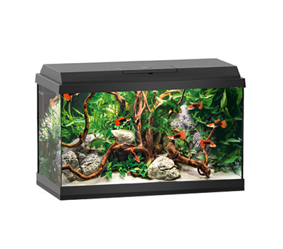 juwel primo 60 led aquarium set schwarz dehner garten center. Black Bedroom Furniture Sets. Home Design Ideas