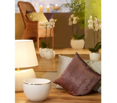 keramik bertopf 39 aureum 39 mit goldrand wei rund dehner garten center. Black Bedroom Furniture Sets. Home Design Ideas