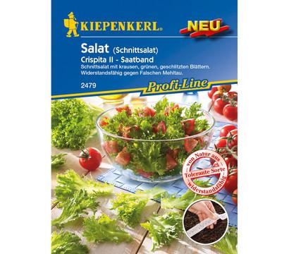 Kiepenkerl Saatband Salat 'Crispita II'