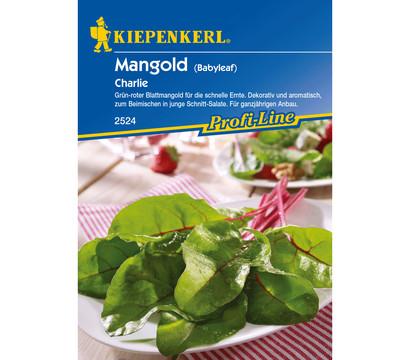 Kiepenkerl Saatgut Mangold 'Charlie'