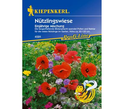 Kiepenkerl Saatgut Nützlingswiese Mix