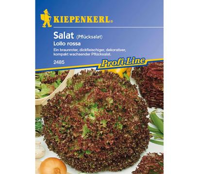 Kiepenkerl Saatgut Salat 'Lollo rossa'