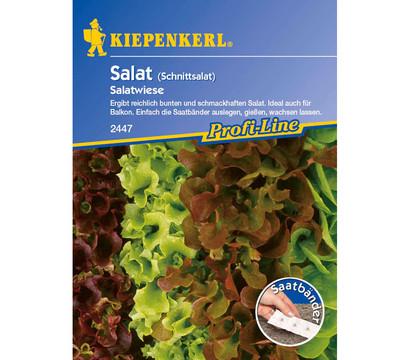 Kiepenkerl Saatgut Salat 'Salatwiese'