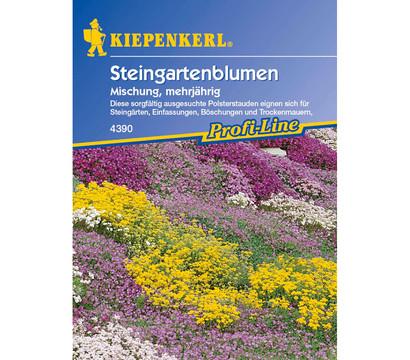 Kiepenkerl Saatgut Steingartenblumen Mix