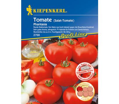 Kiepenkerl Saatgut Tomate 'Phantasia'