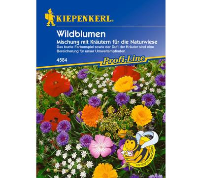Kiepenkerl Saatgut Wildblumen Kräutermischung
