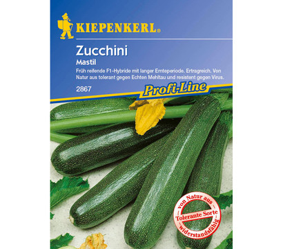 kiepenkerl saatgut zucchini 39 mastil 39 dehner garten center. Black Bedroom Furniture Sets. Home Design Ideas