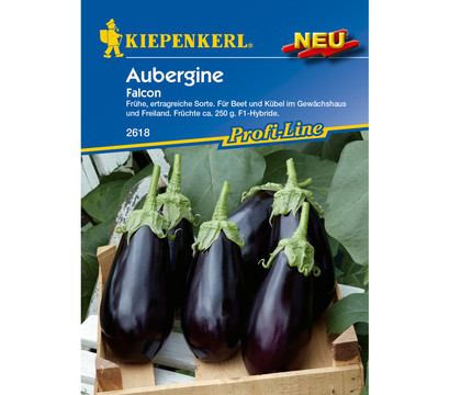 kiepenkerl samen aubergine 39 falcon 39 dehner garten center. Black Bedroom Furniture Sets. Home Design Ideas