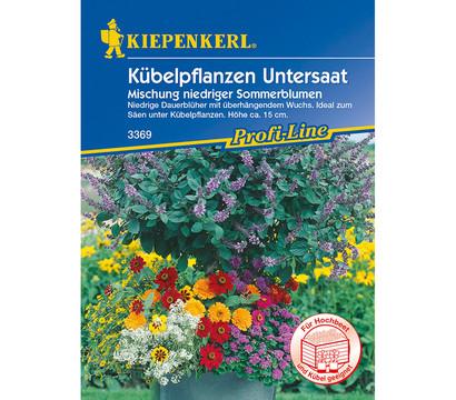 Kiepenkerl Samen Kübelpflanzen Untersaat