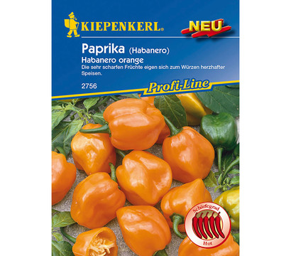 kiepenkerl samen paprika 39 habanero orange 39 dehner garten. Black Bedroom Furniture Sets. Home Design Ideas