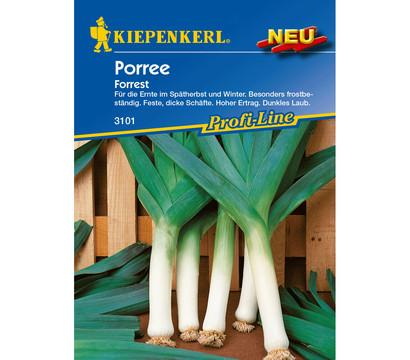 Kiepenkerl Samen Porree 'Forest'