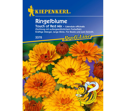 Kiepenkerl Samen Ringelblume 'Touch of Red Mix'