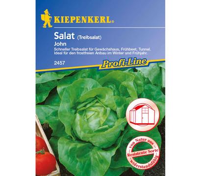 Kiepenkerl Samen Salat 'John'