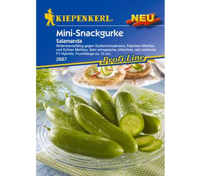 Kiepenkerl Samen Salatgurke 'Salamanda'