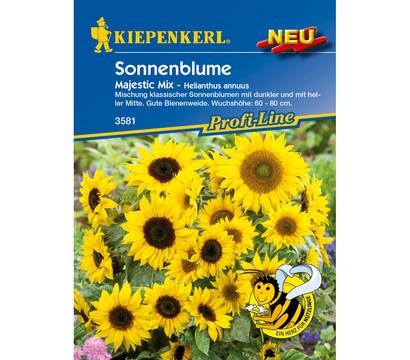 Kiepenkerl Samen Sonnenblume 'Majestic Mix'